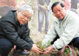 「為下一代種下清新的空氣」三月植樹節老中青幼一起種下希望的樹苗的活動照片